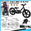 ELECTRIC BIKE 16 DRIVE
